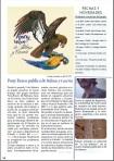 Página 18 de la revista.
